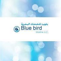 BlueBirdShippingLLC's picture